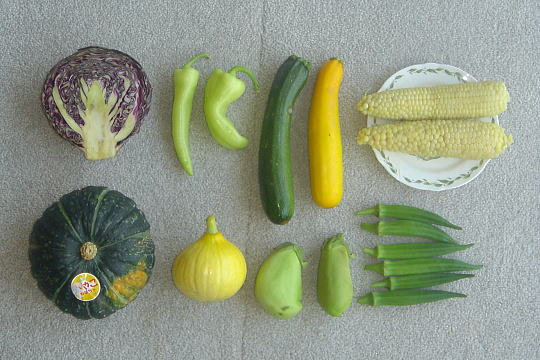 20080810-94-Vegetable-540+360